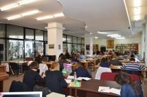 Sala de lectura (2)